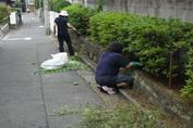 2012-07-24 souji.jpg